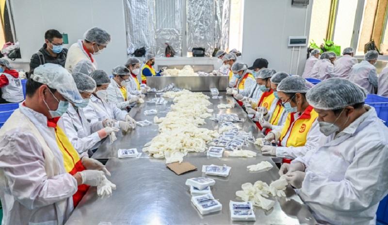 """""""疫情防控,恢复生产""""—湛江市战疫志愿突"""